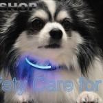 EOO+Optical Fiber Safety Lead